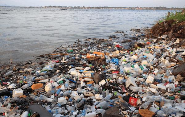 nachhaltigkeit umweltschutz png