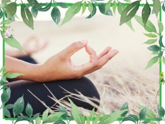 meditation sitz