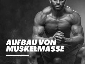aufbau von muskelmasse