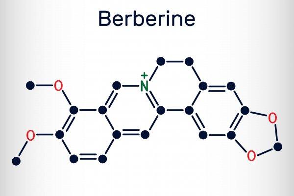 berberin chemishce zusammensetzung