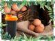 eier eiweissshake