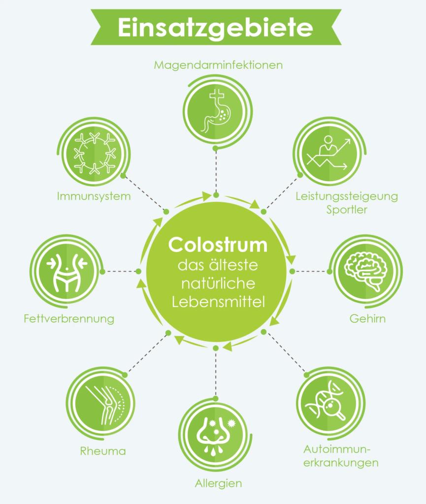 colostrum wirkung infografik
