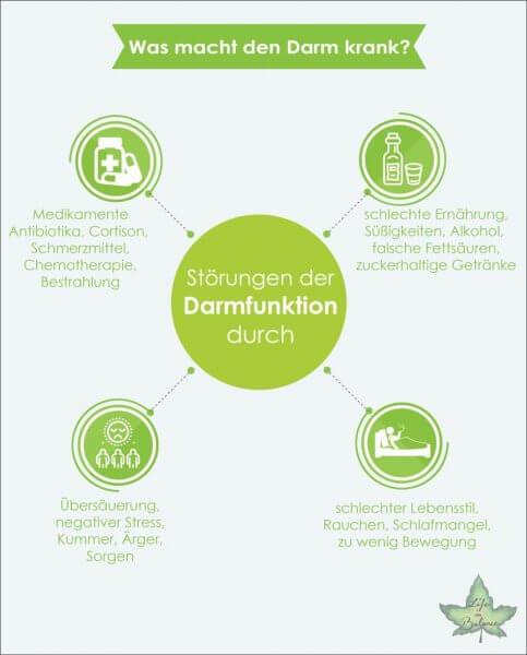 infografik stoerung der darmfunktion x