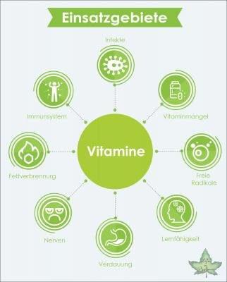 vitamine einsatzgebiete