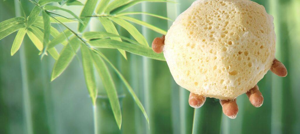 schwamm bambuskohle