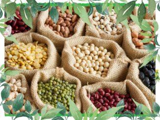 vegan protein bohnen linsen